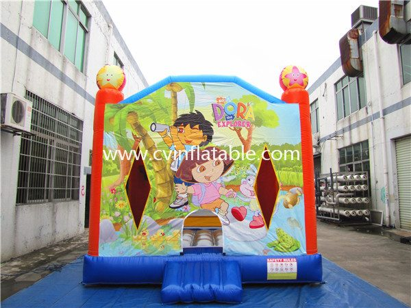 inflatable bouncer (15)