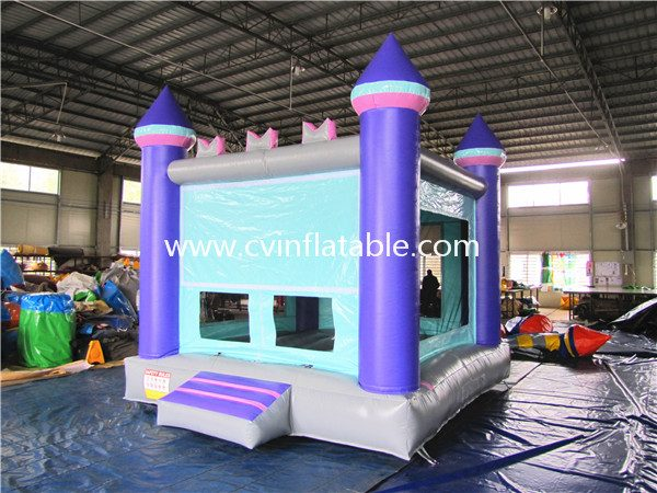 inflatable bouncer (7)