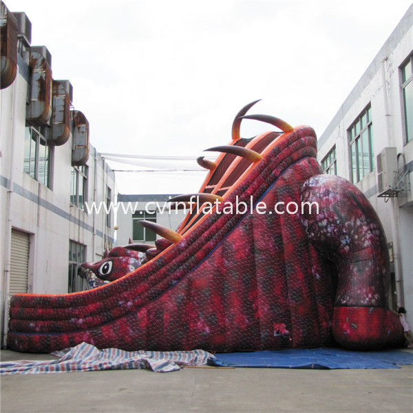 inflatable slide1
