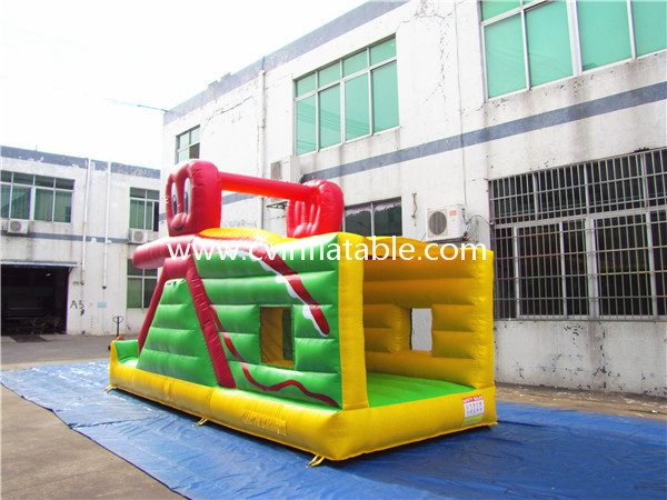 inflatable bouncer slide (2)
