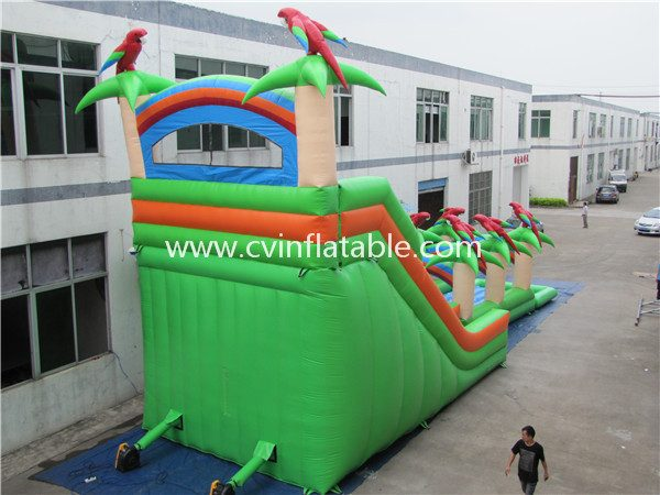 inflatable water slide (2)