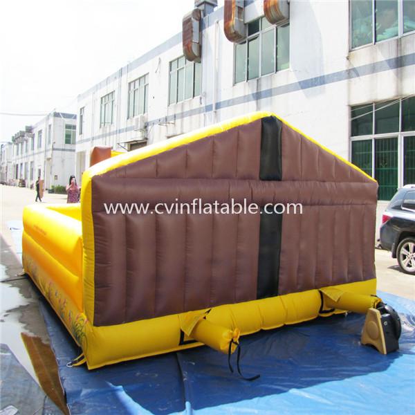 inflatable mattress (2)