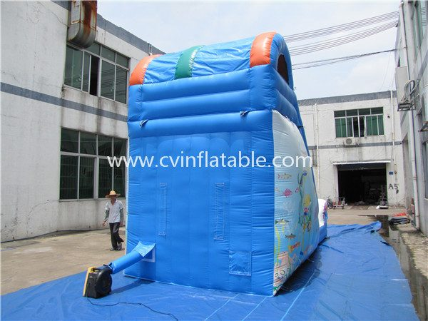 inflatable dolphin slide (3)