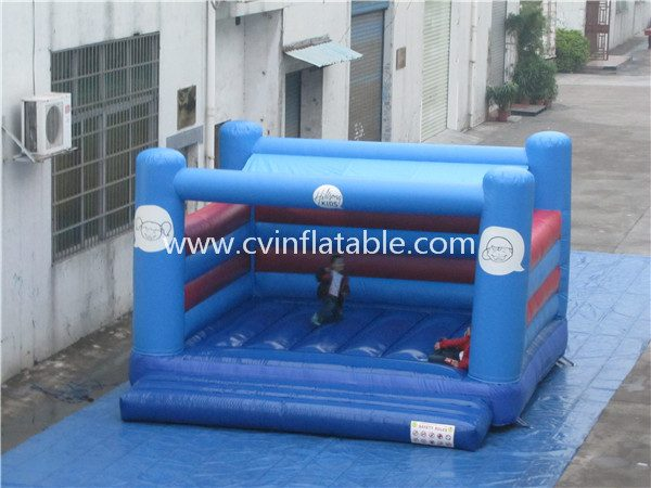 backyard inflatable bouncer (2)