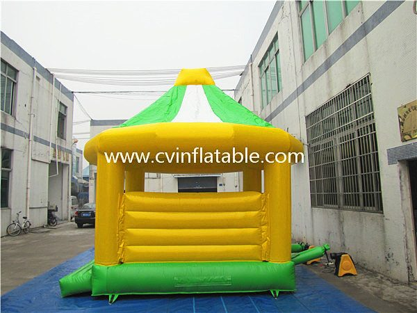 inflatable bouncer (11)