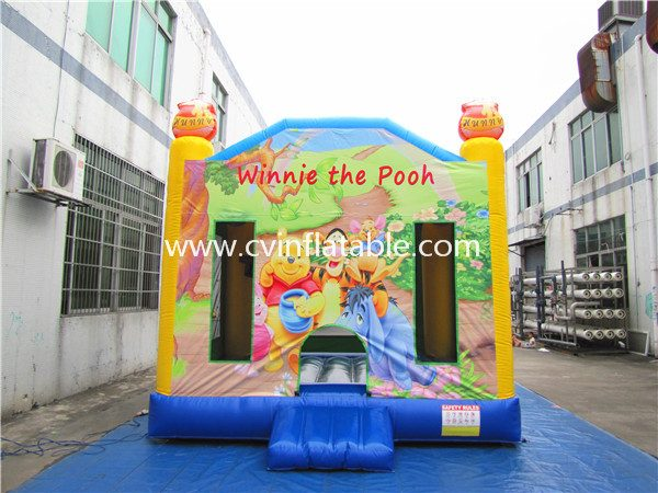 inflatable bouncer (12)
