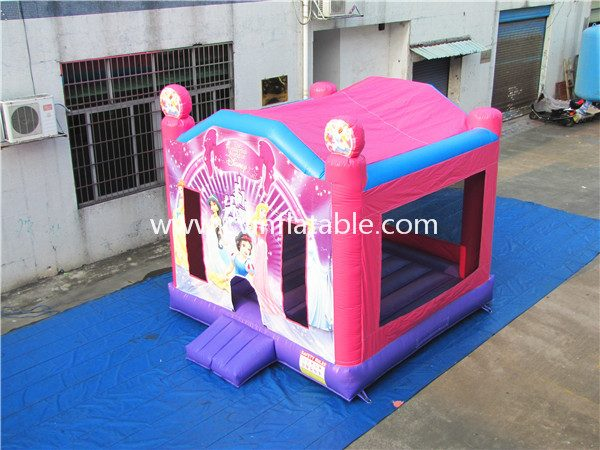 inflatable bouncer (19)