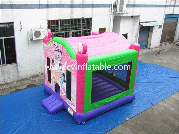 inflatable bouncer (24)