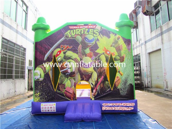 inflatable bouncer (28)