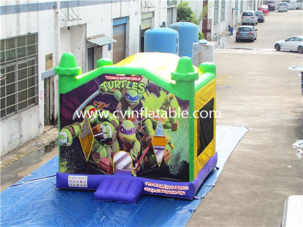 inflatable bouncer (29)