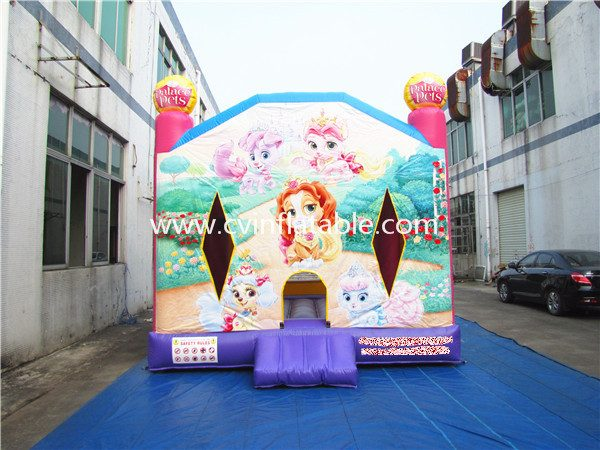 inflatable bouncer (45)