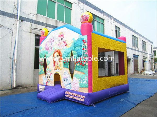 inflatable bouncer (46)