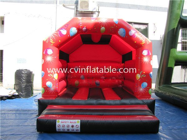 inflatable bouncer (5)