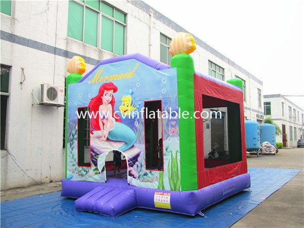 inflatable bouncer (8)