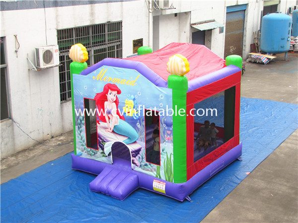 inflatable bouncer (9)