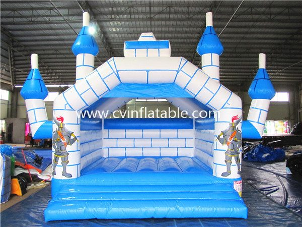 inflatable castle (3)