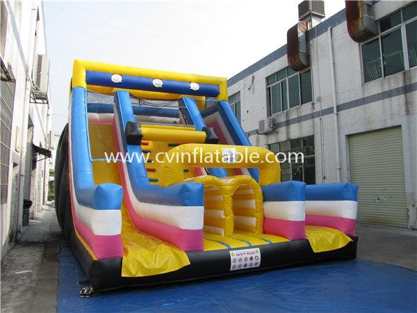 inflatable two lane slide (3)