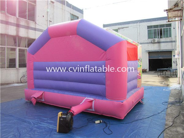 small inflatable bouncer (7)